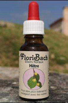 fleur de bach floribach 03 hêtre beech