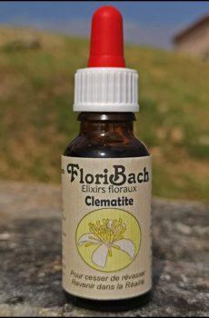 fleur de bach floribach 09 clematis clematite