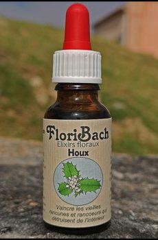 fleur de bach floribach 15 houx holly