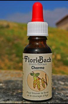 fleur de bach floribach 17 charme hornbeam
