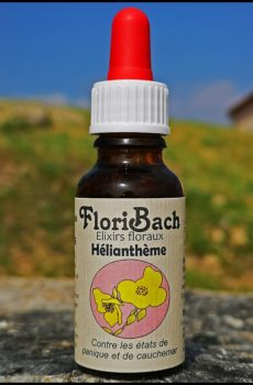 fleur de bach floribach 26 heliantheme rock rose rescue