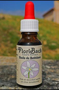 fleur de bach floribach 29 star of bethleem