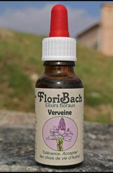fleur de bach floribach 31 vervain