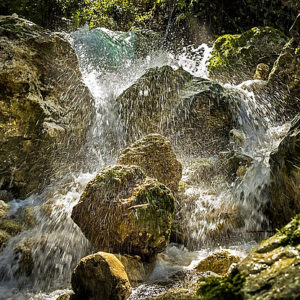 fleur de bach floribach 27 rock water