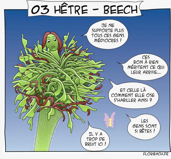 bd dessin fleur Bach Hêtre Beech