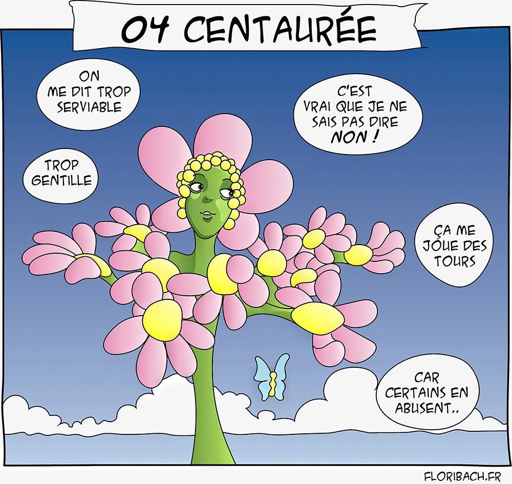 dessin blog bd fleur bach centaury centauree